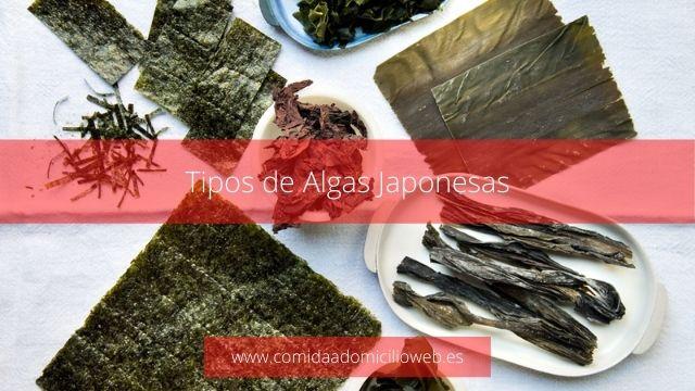 Tipos de algas japonesas